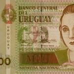 billetes_falsos